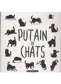 Putain de chats : le grand coffret - Monsieur Pop Corn