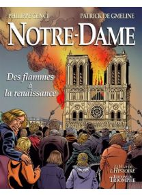 Des flammes à la renaissance - Notre-Dame -